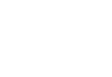 Connections Network Logo White